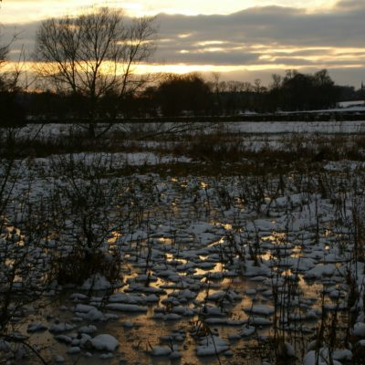 Bishop's Wood winter sunset by Gary Shukie - Click to open full size image
