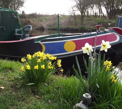 Brewood Canal In Spring